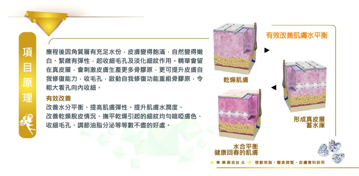 台灣 保濕針-01